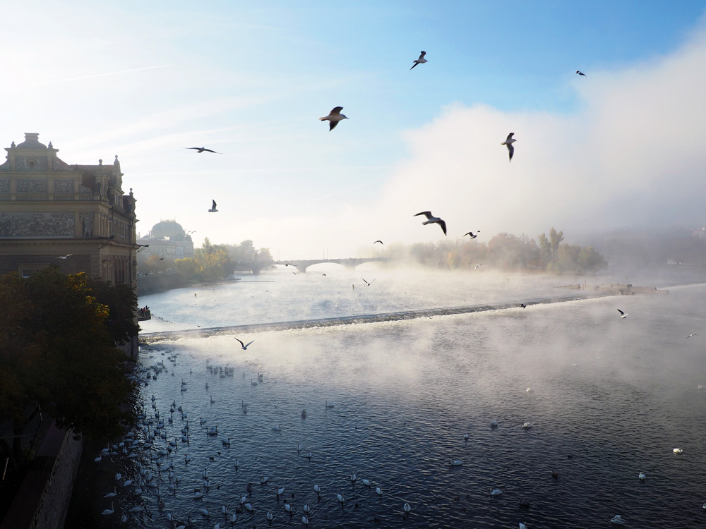 Prague Vltava river morning