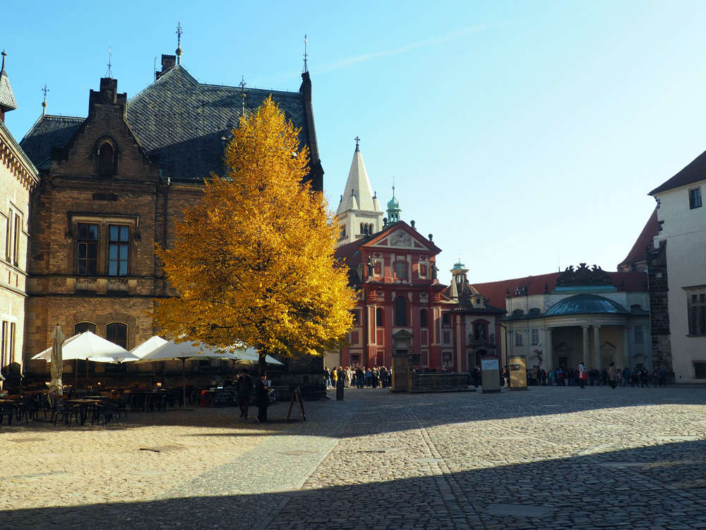 Prague Castle autumn